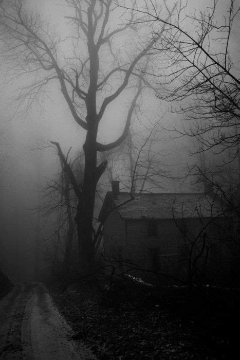 WRITERLY WISDOM: DARCY PATTISON (With images) | Spooky